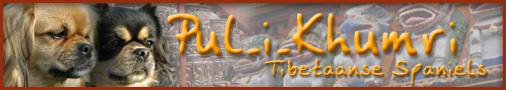 P U L - I - K H U M R I - Tibetan Spaniel Kennel
